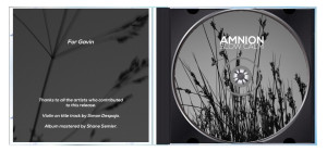 AMNION - Slow Calm